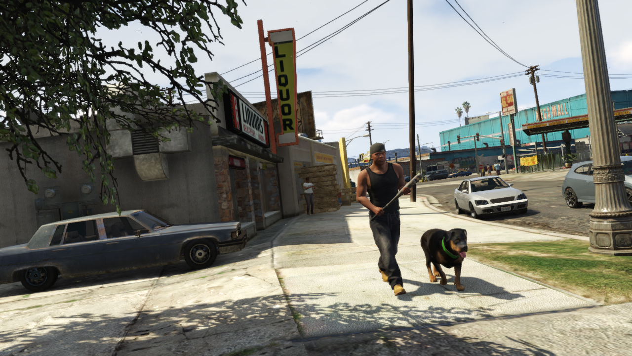 rsg_gtav_screenshot_362